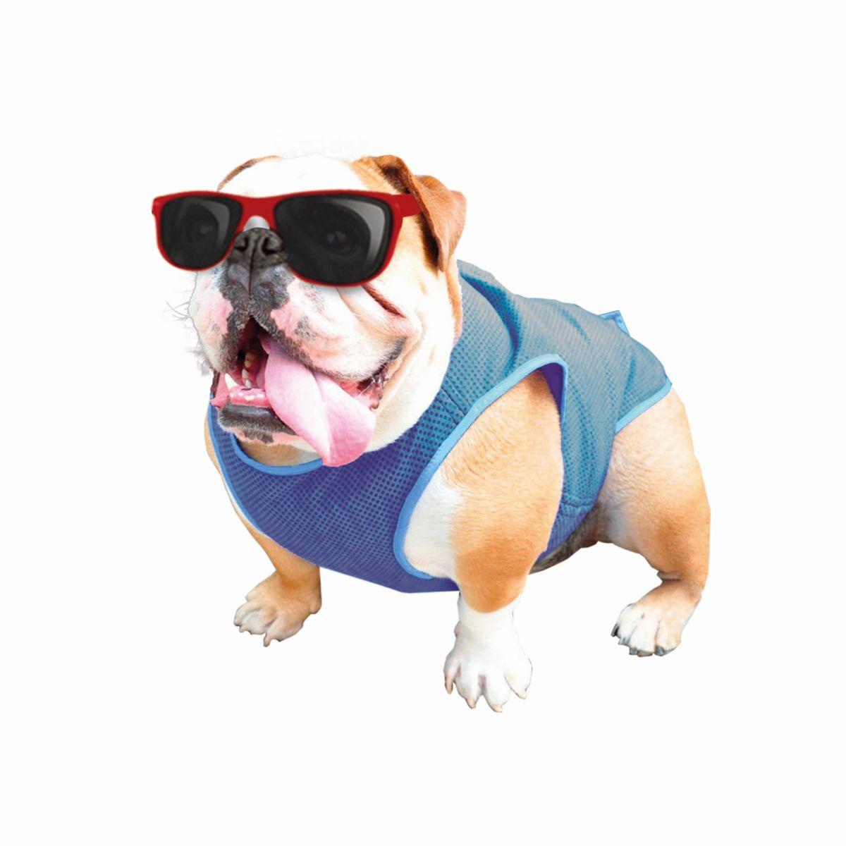 coolvest, koelvest, verkoeling hond, zomer