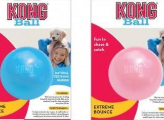 kong bal puppy, kong, puppyspeelgoed, puppy, bal, hondenbal