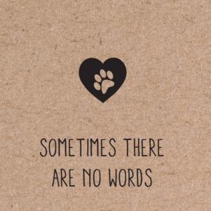 herbafix wenskaarten, sometimes there are no words, wenskaart hond, overlijden hond, overleden hond, liefde hond