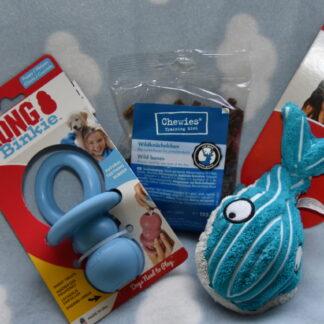 puppypakket kong blauw, kong, puppy, puppie, puppypakket, pup.png