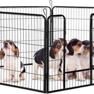 Benches en puppyren
